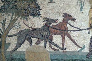 Antieke jachthonden