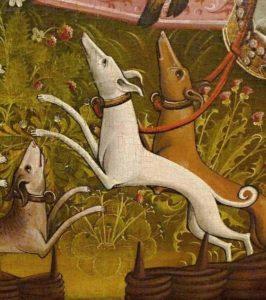 Middeleeuwse jachthonden