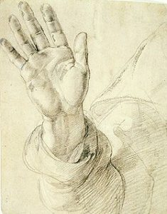 Hand door Andrea del Sarto